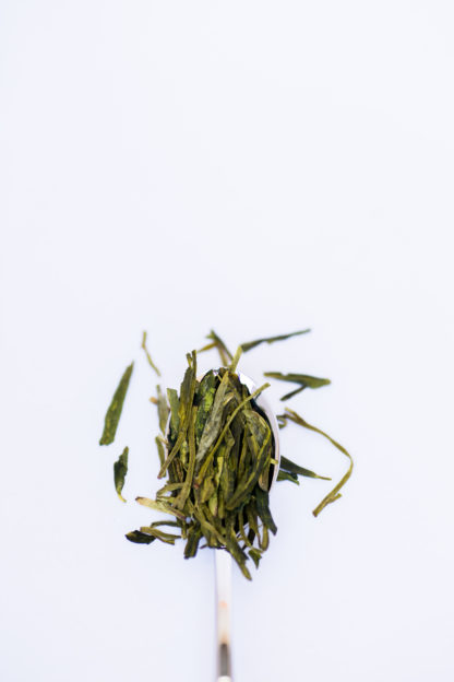 Flattened green tea leaves ranging from dark green to light green-yellow spill over the silver spoon onto the white background