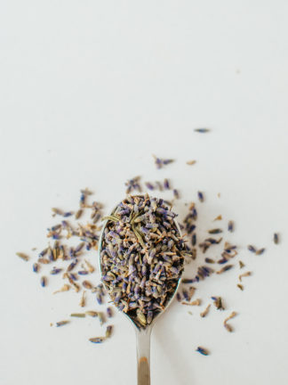Tiny brilliant purple lavender florets sprinkled from a silver spoon onto to a white background