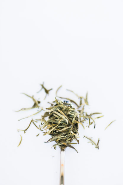Light green and white tea needles overflow the silver spoon onto the white background