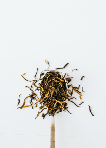 Yellow gold tendril tea buds scooped by a silver spoon spilling onto a white background