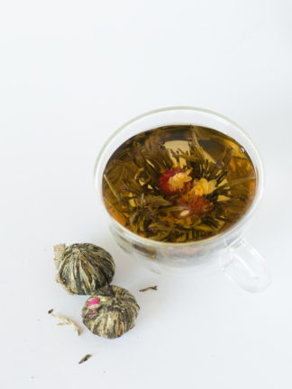 Hand formed balls of green and white tea leaves shaped around bright red amaranth flowers at the base of suspended jasmine flowers unfold in a tea cup on white background