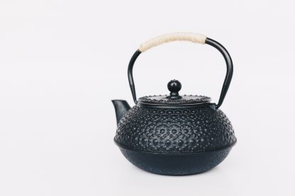 Black cast iron rounded teapot with rosette stippled pattern on surface, short curved spout and heavy duty cast iron arching handle wrapped with tan cord on white background