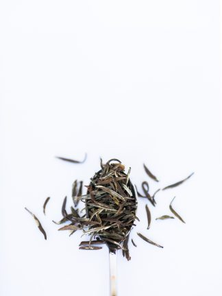 Dark green loose leaf tea resembling bamboo leaves overflowing a silver spoon on white background